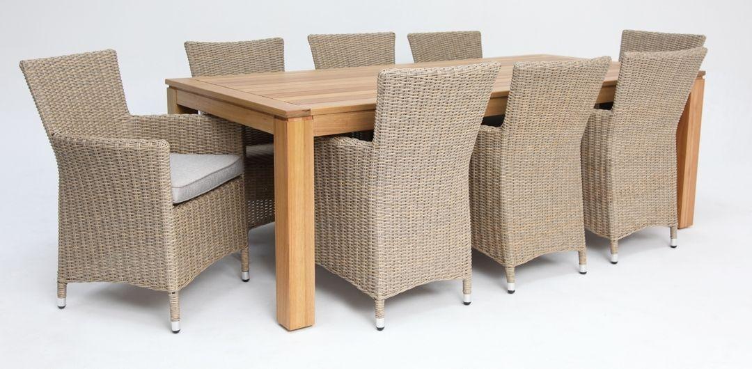 Selina-Amani 220cm 9 piece dining set driftwood